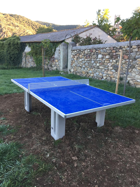 table de ping pong bleu